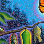 Our World is in Transition – From Caterpillar to Butterfly