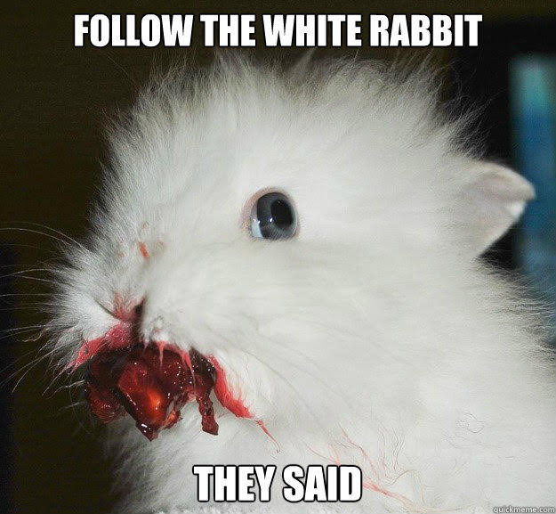 craziness of life - don't follow the white rabbit